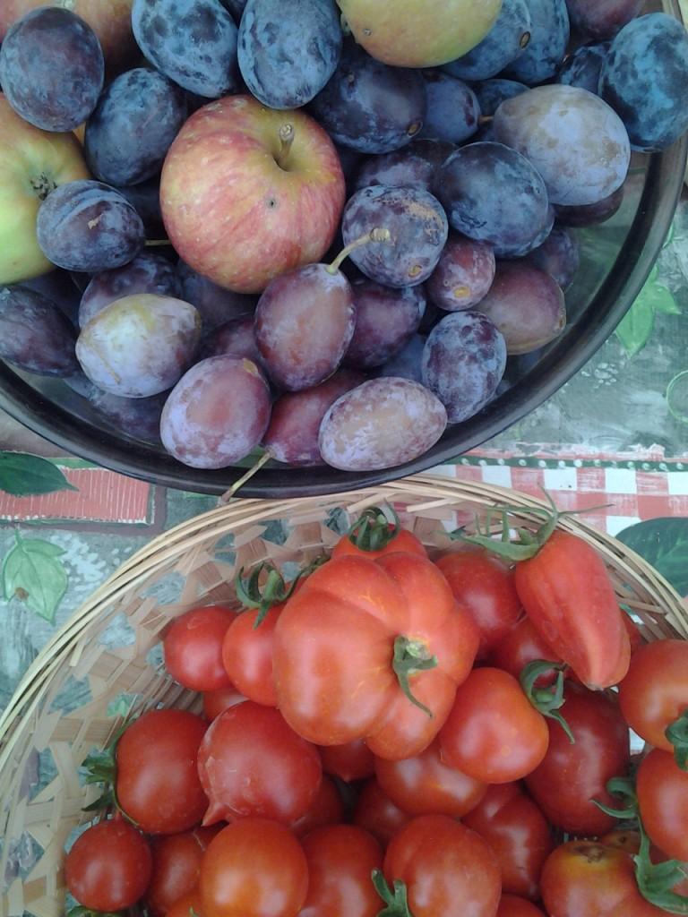 Tomaten, Äpfel, Zwetschgen